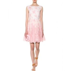 Alice Olivia lacy dress